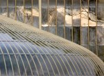 Repetitive Patterns Competition - Glasshouses, Botanic Gardens © Suella Holland