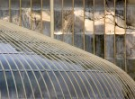Repetitive Patterns Competition – Glasshouses, Botanic Gardens © Suella Holland